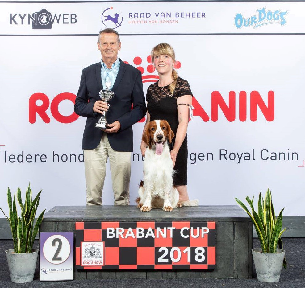 Brabantcup 2e Best junior in show