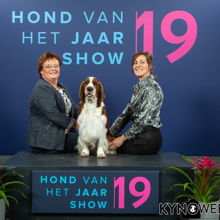 HvhJ show 2019 Keepsake from Kind of Magic